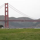 Golden Gate Grass by Robert Brown