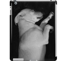 Puppy Dreams iPad Case/Skin