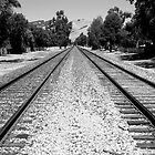 train tracks by Lucas Hasserjian