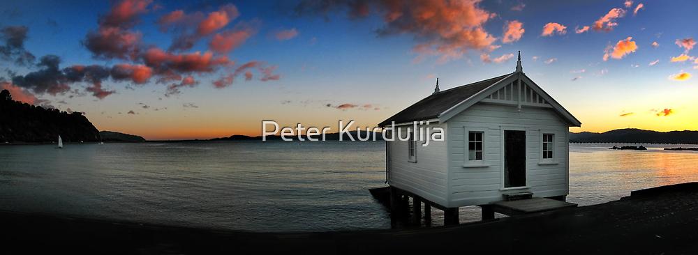 Great Southern Sky by Peter Kurdulija