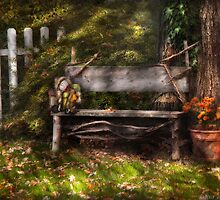 A seat for a little guy  by Mike  Savad