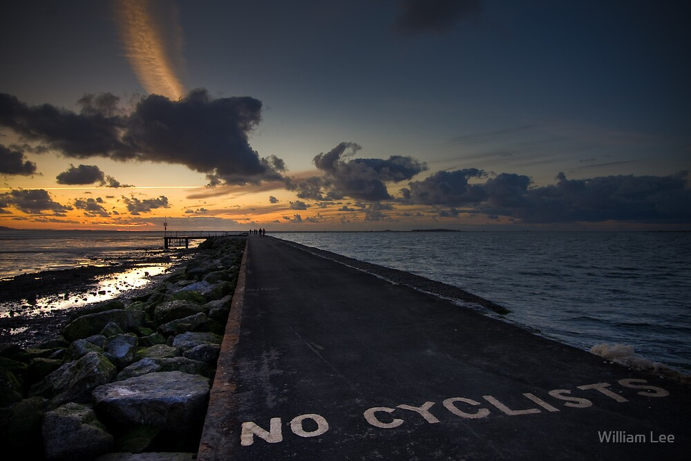 No Cyclists by William Lee