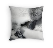 Wrapped In Swans Down Throw Pillow