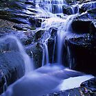Upper Wanliss Falls by Travis Easton