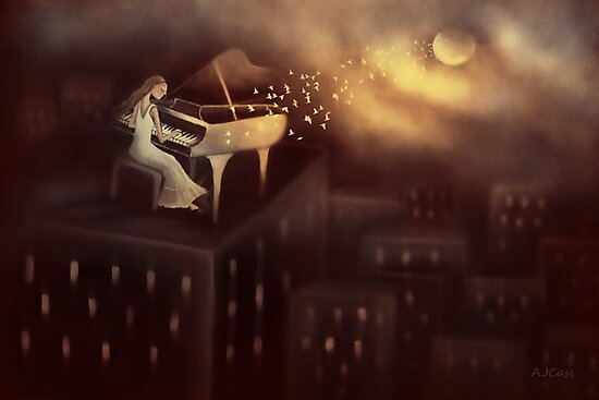 Moonlight Symphony by Amanda  Cass