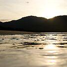 Sealer Cove Sunset by Alex Evans