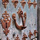 Ornate old door - Camino de Santiago by Hilda Rytteke