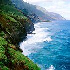 Na Pali Coast Kauai Calendar by kevin smith  skystudiohawaii