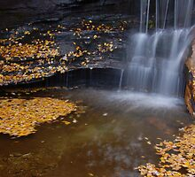 water in fall by dc witmer