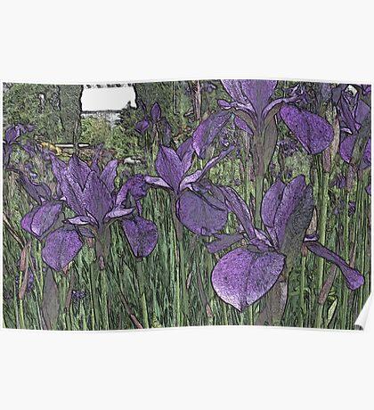 Purple contours Poster