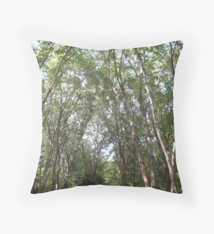 Aura of nature Throw Pillow