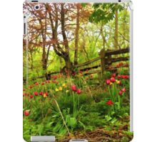 Fresh and Colorful Hillside - Impressions Of Spring iPad Case/Skin