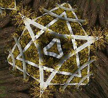 "Natural Star of David by David ""Oz""  Osterczy"