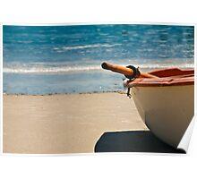 Aquatic Fun. Poster