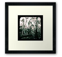 Bush Country Framed Print