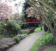 Irish Japenese gardens by John Quinn