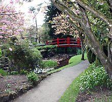 Irish Japenese gardens by John Quinn
