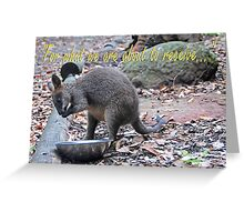 Wallaby Grace. Greeting Card