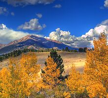 Autumn Along Mt Meeker by John  De Bord Photography
