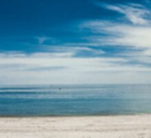 Seacliff Panorama by Ryan Carter