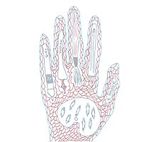 Passionate Hand Photographic Print