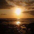 Golden Sea Light :) by Honor Kyne