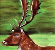 The Irish Deer by Alan Hogan