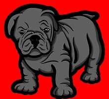 Grumpy Bull Dog Puppy Grey by Sookiesooker