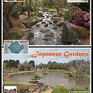 Japanese Gardens Postcard by Keith Smith