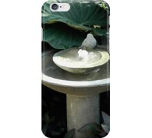 Garden Bird Bath iPhone Case/Skin