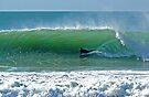 surfing by terezadelpilar~ art & architecture