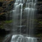 Harrison Wright Falls by Michael  Dreese