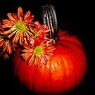 Pumpkin Time by DottieDees