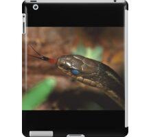Garter Snake Portrait iPad Case/Skin
