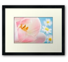 Pink Lily and Daisies Framed Print