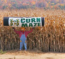 Corn maze by sunshine0