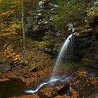 B. Reynolds Falls by Michael  Dreese