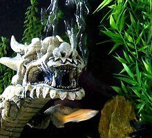 Dragon Fish by Dawn Palmerley