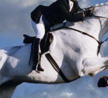I LOVE HORSES Sticker
