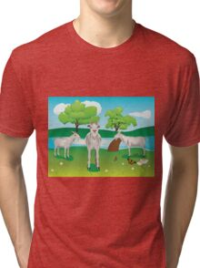 Goat and Green Lawn2 Tri-blend T-Shirt