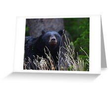 Black Bear Smile Greeting Card