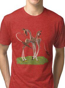 Cute Deer  Tri-blend T-Shirt