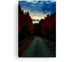 Night Passage Canvas Print