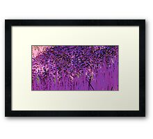 Deeper Shade of Purple-Available As Art Prints-Mugs,Cases,Duvets,T Shirts,Stickers,etc  Framed Print