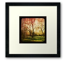 The Trees Whispered To Me Framed Print