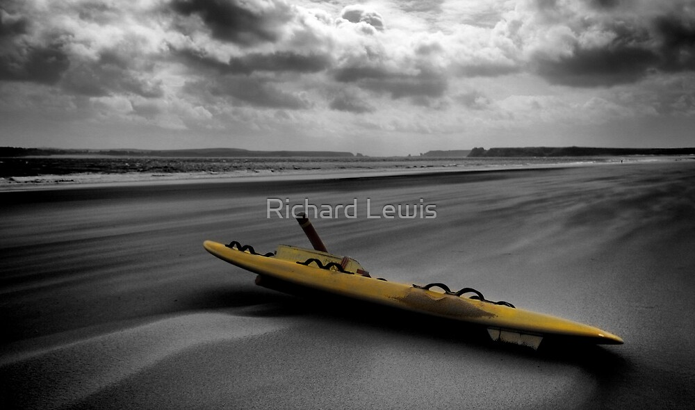Lifeguard by Richard Lewis