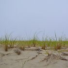 Sand Dunes by Sunshinesmile83