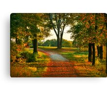 Journey In Your Dreams Canvas Print