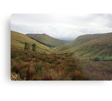 Rural Donegal Metal Print