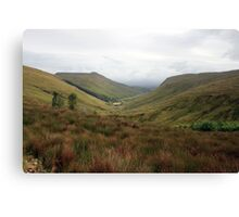 Rural Donegal Canvas Print